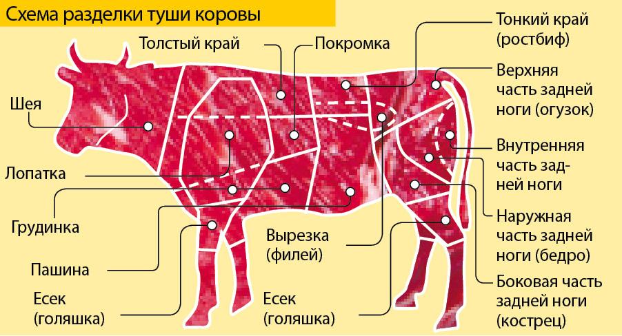 Схема частей говяжьей туши