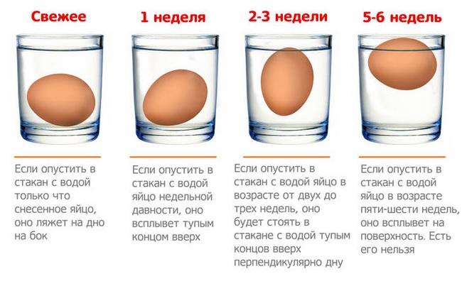 Определяем свежесть куриного яйца