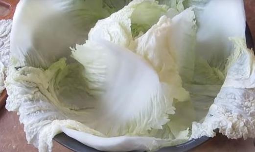 Выкладка нижнего слоя капустных листьев